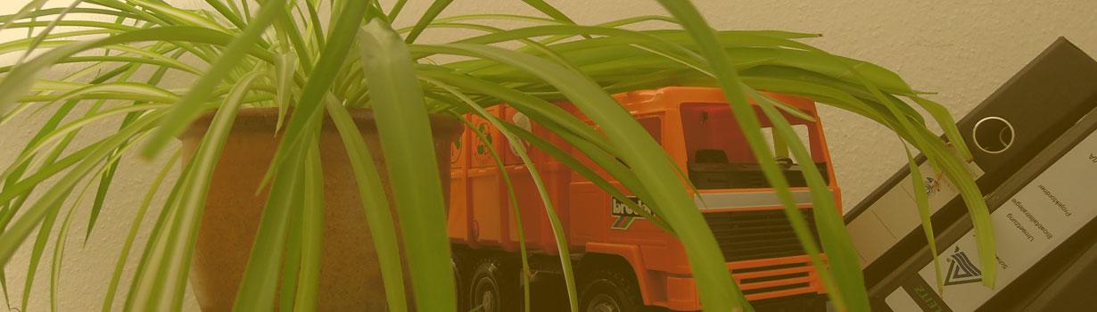 banner-gruenpflanze-sfz