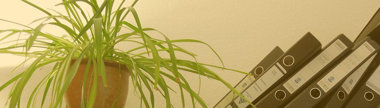 banner-gruenpflanze
